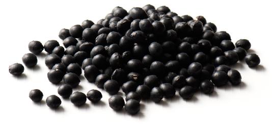 丹波篠山産の黒豆エキス